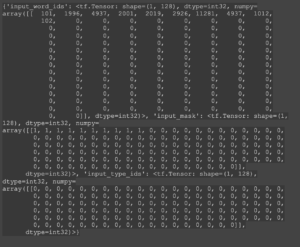 Screenshot example of preprocessing layer output